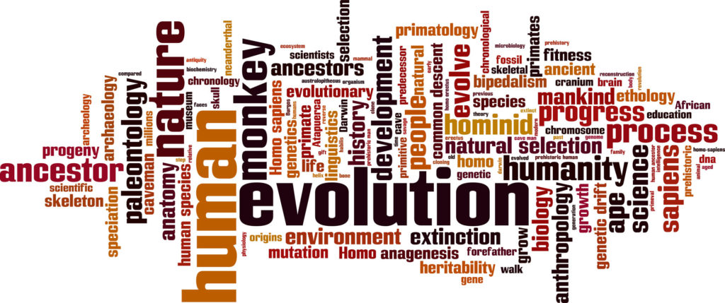 Evolution Tag Words By Boris15
