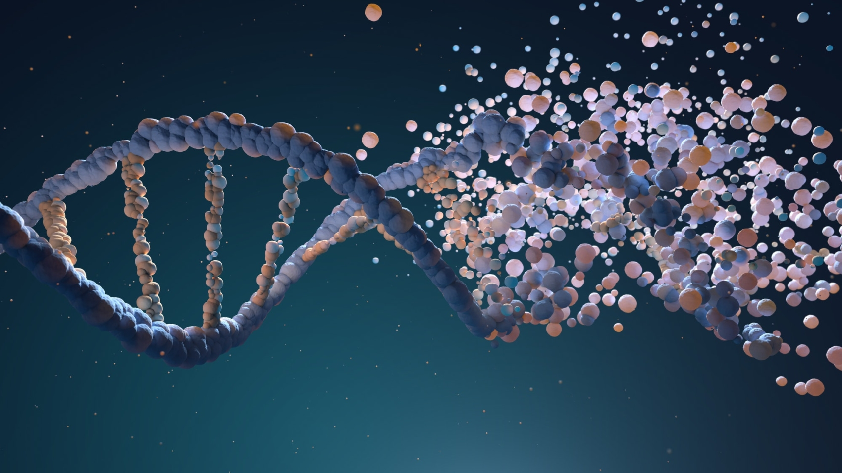 DNA strand assembling from different elements. By iLexx.