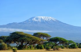 landscape of Mount Kilimanjaro - the roof of Africa in Tanzania by MHSKYPIXEL.