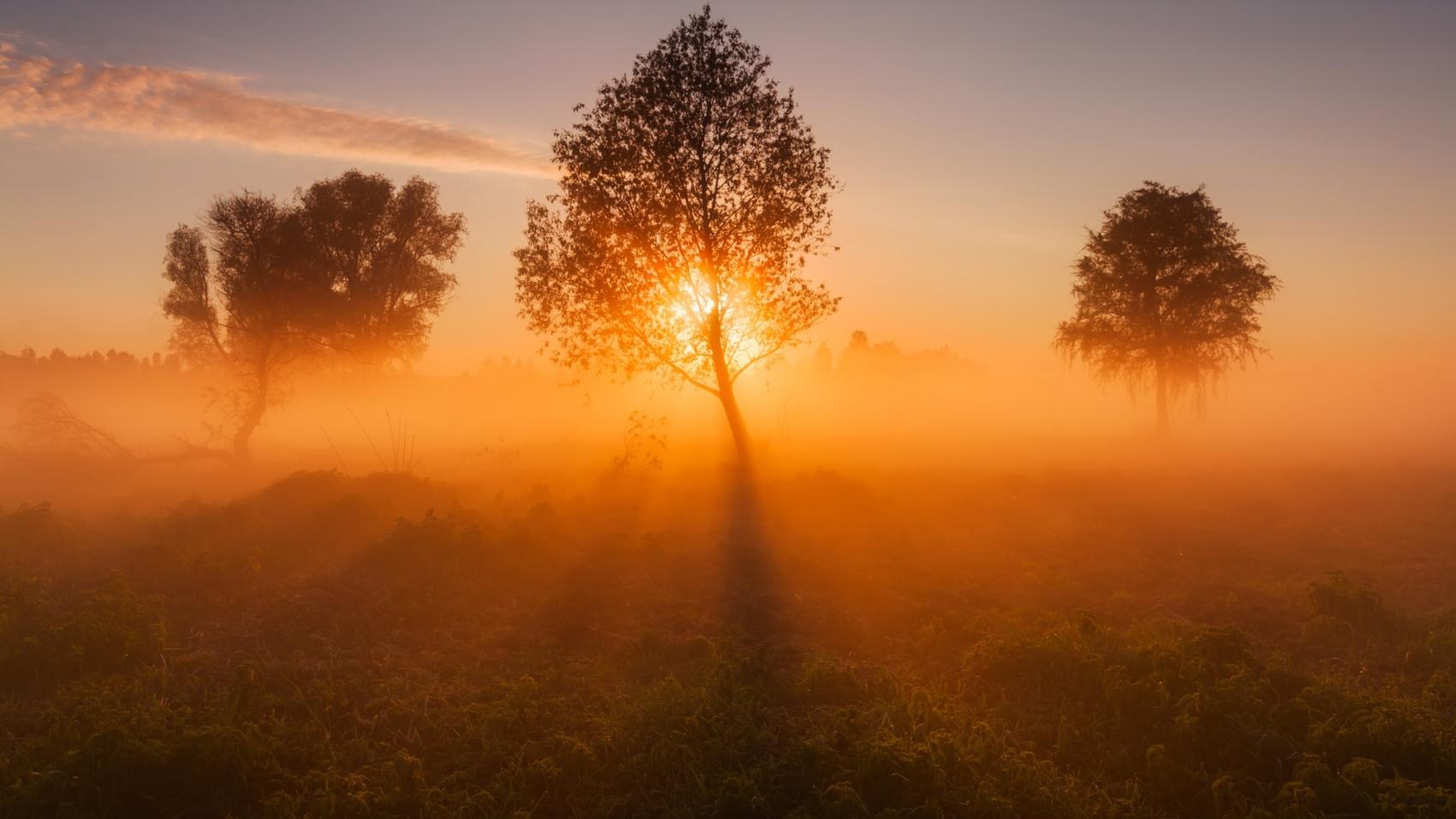 Matin, soleil levant et brouillard  by antonpetrus
