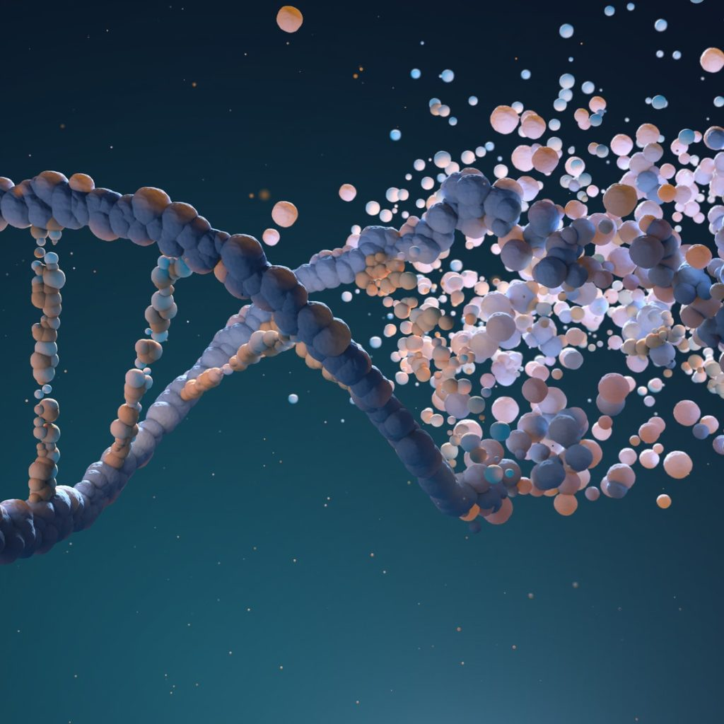 More Than 1 Million of Possible 'Genetic Molecules' combination! The same is true for Social and Economic activities!!!